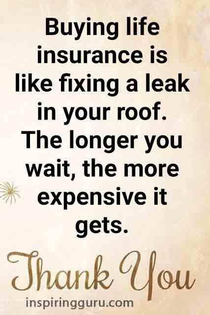 Insurance is like fixing a leak